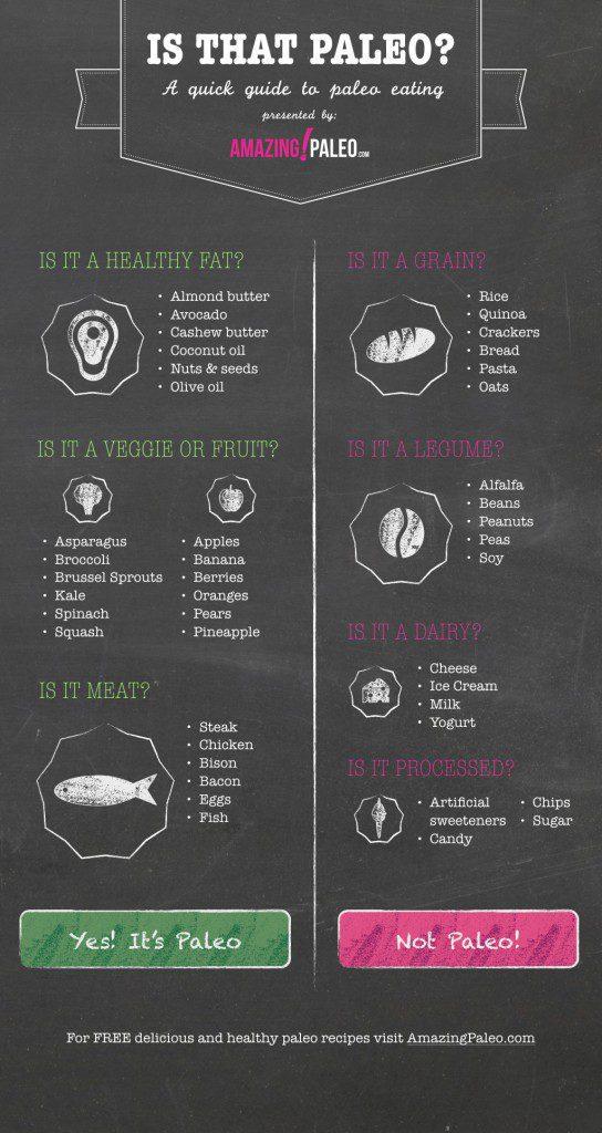 Paleo Diet Guide Infographic - Amazing Paleo