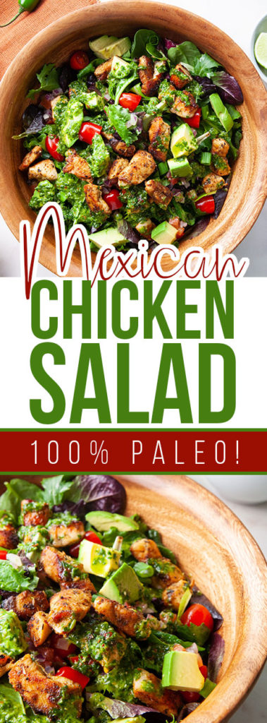 Epic Paleo Mexican Chicken Salad